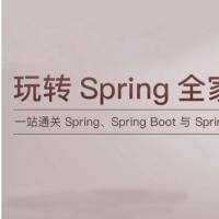 全新课程带你吃透Spring全家桶-重新定义你对Spring技术的认知 大神全程操刀精讲Spring